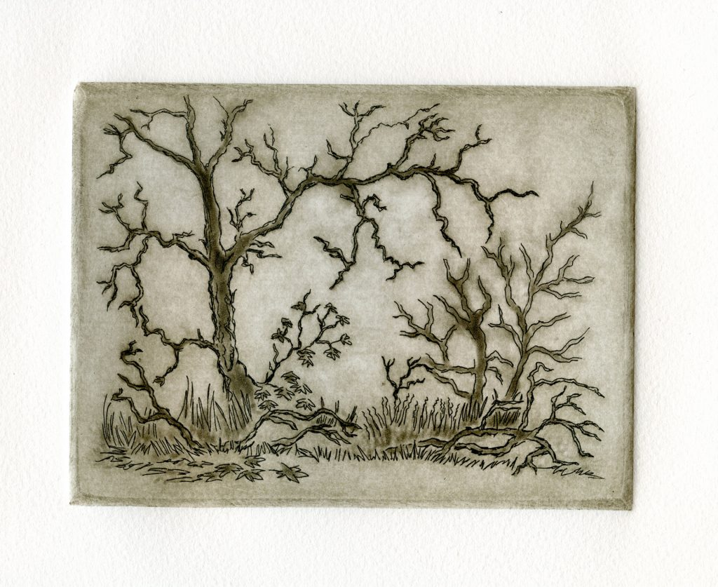 "Pleasanton Ridge Fog - aquatint 6""x4.5"" - $75"